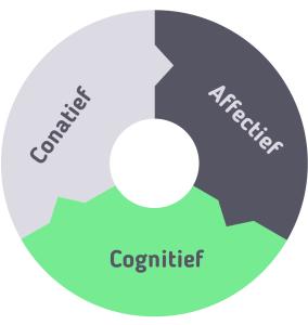 Tricomponent attitudemodel conatief affectief cognitief